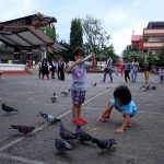PARK HABITUES. Twin sisters feed the pigeons with seeds at Rizal Park in Davao City yesterday. The pigeons at Rizal Park are fast becoming attraction for young and old Dabawenyos. LEAN DAVAL JR.