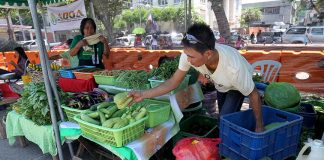 LOCAL PRODUCE. A farmer displays his own produced vegetables during Agri-Fishery Fair at Rizal Park on Tuesday which is part of the Farmers' and Fisherfolks' month celebration. LEAN DAVAL JR.