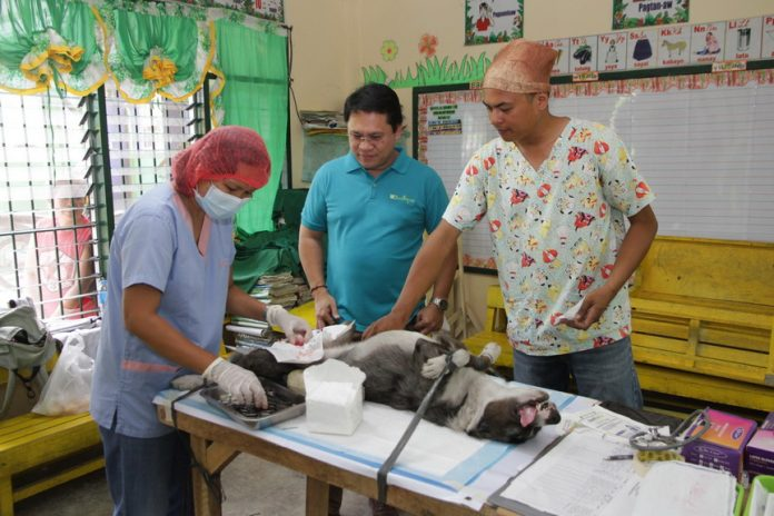 In addition to the services brought by the Hugpong Serbisyo, veterinary services such as anti-rabies vaccination and castration of cats and dogs were also offered free for the Tagumenyo pet-owners. Leo Timogan/CIO TAGUM