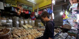 ARRAY OF CHOICES.A vendor displays different varieties of dried fish on a makeshift store at Bankerohan Public Market in Davao City on Thursday. LEAN DAVAL JR.