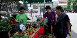 VARIETY. Elderly women browse across a display of organic fruits and vegetables on display at Rizal Park's organic market on Saturday. LEAN DAVAL JR.