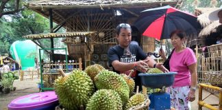 AFFORDABLE.Native Durian fruits are sold for P100 per kilo at the Kadayawan village inside Magsaysay Park in Davao City on Tuesday. Prices of the fruit at the fruit stalls around the city vary from P120 to P150 per kilo. LEAN DAVAL JR.