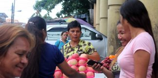 FLAVOR OF THE SEASON. Street vendors selling 'Christmas fruits' such as apples and grapes start to sprout up near shopping malls in Davao City's downtown area, a reminder that yuletide season is just around the corner. LEAN DAVAL JR.