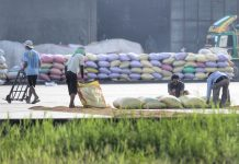 SOLAR DRYER. Workers prepare to dry rice under the sun at a rice mill in Davao del Sur. The public expressed hope that the Department of Agriculture would finally deliver on its promise to make the country rice sufficient by 2018. LEAN DAVAL JR.