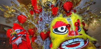 LION DANCE. Performers of traditional lion dance open the Chinese New Year celebration at the Marco Polo Davao on Thursday night. LEAN DAVAL JR