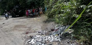THE CRIME SCENE. Fish scattered at the area where fish seller Larry Buenafe was hit by shrapnel from an improvised explosive device which was set off by the blocking force of the New People's Army (NPA) after setting the Lapanday plants on fire last Saturday in Mandug, Davao City. Buenafe, who fell into a coma after the incident, died on Thursday. LEAN DAVAL JR.