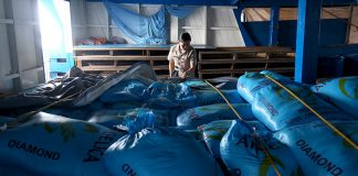 PAPERLESS CARGO.Naval Forces of Eastern Mindanao (NFEM) officer in charge Ensign Aileen Jansor shows dozens of sacks of rice which are part of the 5,000 bags of undocumented rice aboard M/B Sunlight that was apprehended by the authorities off the coast of Davao Oriental on Sunday. The vessel is currently under the custody of the Philippine Navy at Naval Station Felix Apolinario in Panacan, Davao City. LEAN DAVAL JR.