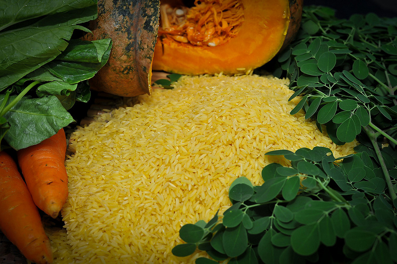 Golden rice in the offing