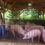 AGRITRENDS: BUY LOCALLY, PROTECT HOG INDUSTRY