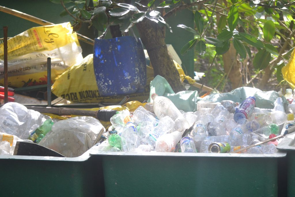 Environment: Biodegradable Substitute to Synthetic Plastics